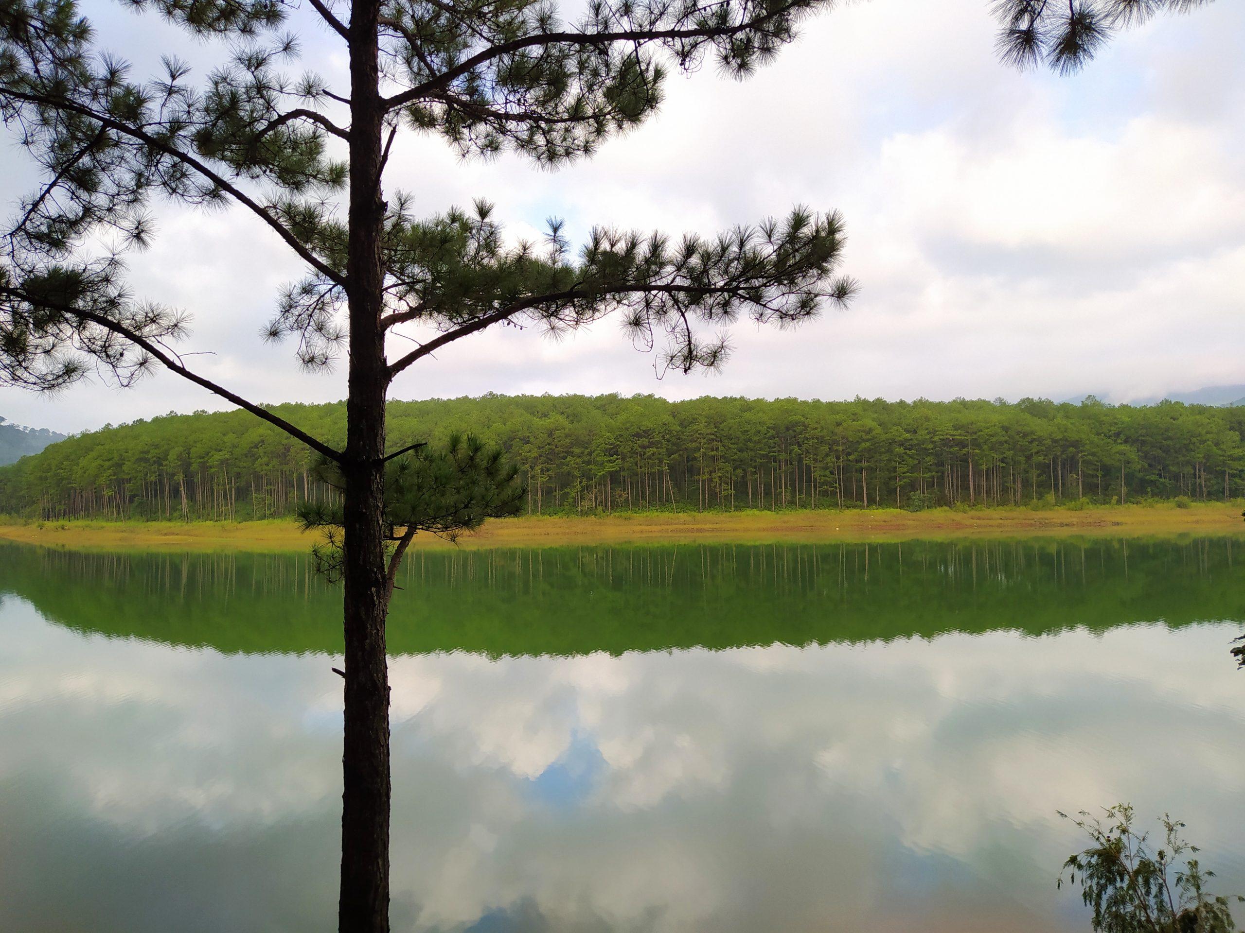 Hồ Tuyền Lâm, Đà Lạt (2020).